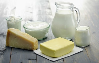 Dairy Starter Cultures